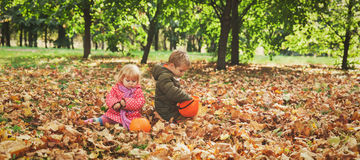 Little boy and girl play with autumn leaves in nature Stock Image
