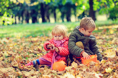 Little boy and girl play with autumn leaves in nature Stock Photos