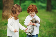 Little boy and girl playing with rabbit Stock Image