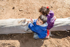 Little boy and girl playing on a tree trunk Royalty Free Stock Photo