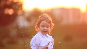 Little girl run and play. They blow dandelion. sunset