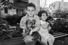 Little boy and girl sitting on a bench and holding a dog in her Stock Photos