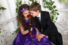 Little boy and girl smelling flower in arbor Royalty Free Stock Image