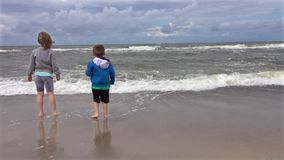 Siblings on the beach stock video footage