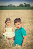 Little boy and girl in wheat field Stock Images
