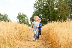 Little boy and girl on a wheat field royalty free stock images