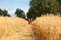 Little boy and girl on a wheat field stock photo