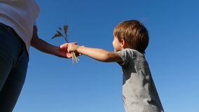 A little boy gives a bouquet of wild flowers to his mother. Bottom view against the blue sky. Emotions of happiness