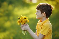 Little boy gives a bouquet yellow dandelions to his mother or gi Royalty Free Stock Photos