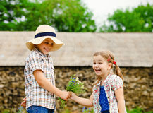 Little boy gives flowers to the little girl Stock Image