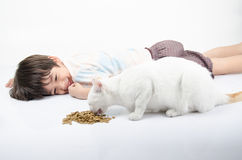 Little boy giving food for cat Stock Image