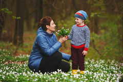 Little boy giving mother flowers. Photo of little boy giving mother flowers Stock Photo