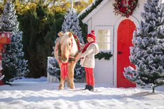 Little boy with glasses caresses adorable pony with festive wreath near the small wooden house and snow-covered trees. New Year an stock image