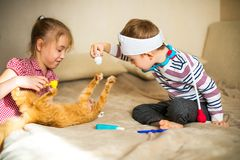 Little boy in the glasses with syndrome dawn and blonde girl play with toys and ginger cat.  stock photo