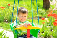 Little boy goes for a drive on a swing. On a background of flowering tulips in the garden stock photography