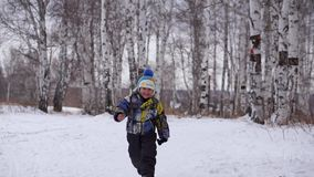 A little boy goes to the Woods on snow. stock video footage