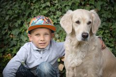 Little boy with a golden retriever. Little cute boy playing with his dog in the park stock image