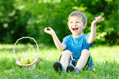 Little boy on grass with basket of apples Stock Images