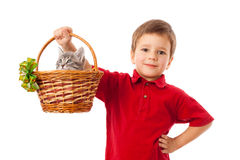 Little boy with gray kitty in basket Stock Photos