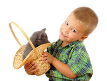 Little boy with gray kitty in wicker Royalty Free Stock Photography