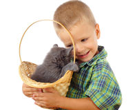 Little boy with gray kitty in wicker Royalty Free Stock Photos