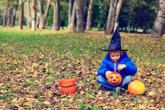 Little boy in halloween costume in autumn Stock Photography