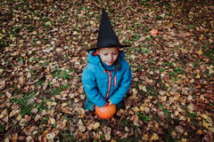 Little boy in halloween costume in autumn Stock Images
