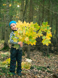 Little boy in hat holding maple branch and smiling Stock Photos
