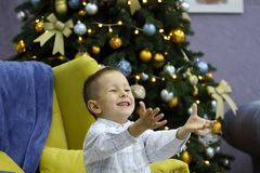 Little boy have fun on background of Christmas tree stock photography