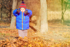 Little boy having fun in autumn Royalty Free Stock Images