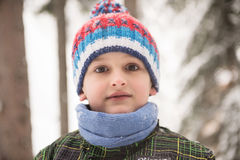 Little boy having fun on winter day Royalty Free Stock Photography