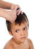 Little boy having a haircut at home Stock Photos