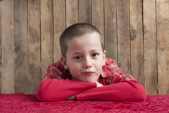 Little boy,  head resting on his arms Stock Photography