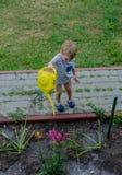 Little boy helps water the flowers. Little child helps water the flowers in the garden stock images