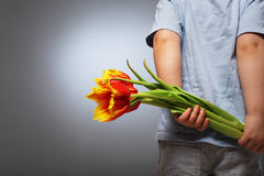 Little boy hides behind surprise. Flower Royalty Free Stock Images