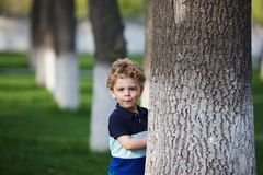 Little boy is hiding behind a tree Stock Photos