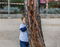 A little boy is hiding behind a tree Royalty Free Stock Photo