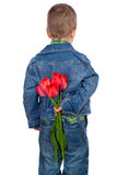 Little boy hiding red tulips. Behind his Stock Photography