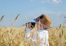 Little boy hiding in a wheat field bird watching Royalty Free Stock Images