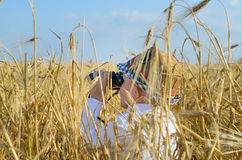 Little boy hiding in a wheat field bird watching Stock Photography