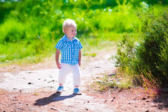 Little boy hiking in a forest Royalty Free Stock Image