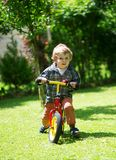 Little boy on his balance bicycle in park Stock Photography