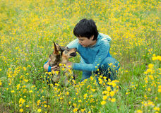 Little boy with his dog Royalty Free Stock Photos