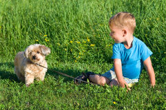Little boy with his dog Stock Images