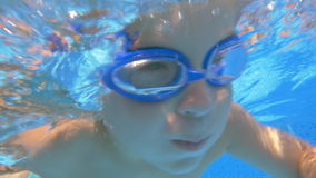 Little Boy and His Family in Home Pool stock video footage