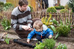 Little boy and his father planting seeds in vegetable garden Royalty Free Stock Photography