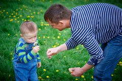 Little boy and his father play with dandelions Stock Photo