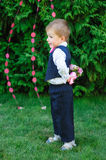 Little boy holding a bouquet of flowers in the park Stock Image
