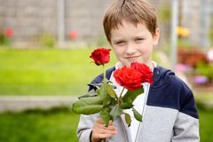 Little boy holding a bouquet of roses Stock Image