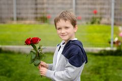 Little boy holding a bouquet of roses Royalty Free Stock Photo